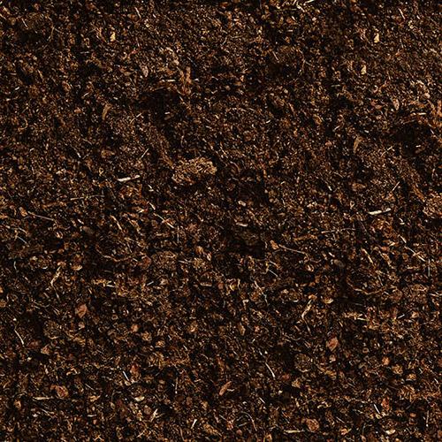 compost présenté dans deux mains serrées avec une plante au centre